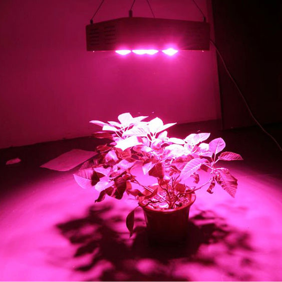 2016 The Best Full Spectrum 300W LED Grow Light COB For Replacing <strong>1000W</strong> HPS/MH