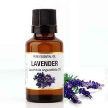 Wholesale 100% natural Skin Care fragrance perfume organic lavender essential oil