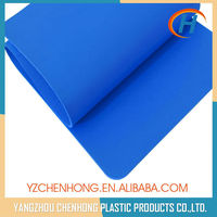 Blue Eco-friendly 100% TPE Custom Recycled Yoga Mats