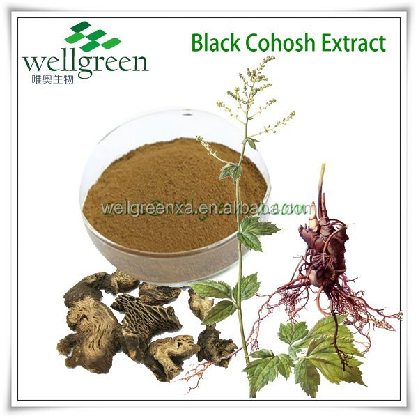 Top quality Black Cohosh P.E, 2.5-8%(Food and Drink Grade)