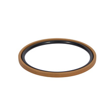 Steel spring energized loaded ptfe oil seal