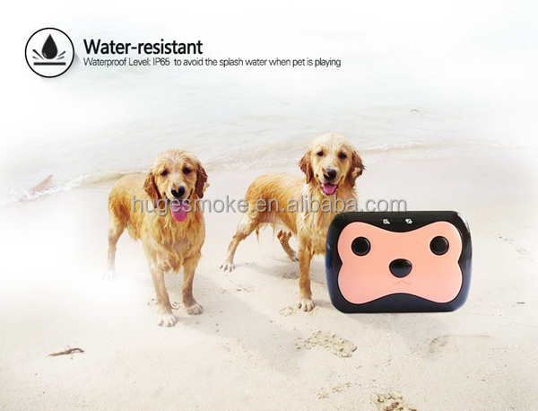 2016 New Fashion cheap Mini Waterproof Personal Pet Gps Tracker with APP Software