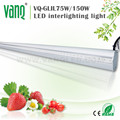 2017 75w interlighting LED grow bar to replace high pressure sodium grow lights