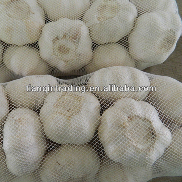 2013 garlic price in China