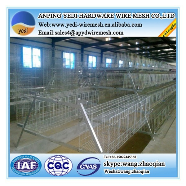 anping chicken coop wire netting