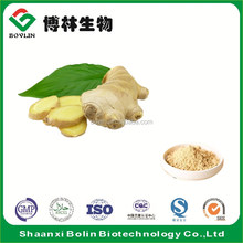 High Quality 100% Pure Fresh Dried Yellow Ginger Powder