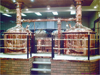 2015 hottest ice manufacturing plant/soda stream for fresh beer/cerveza/wine making ---- for russia speaking market