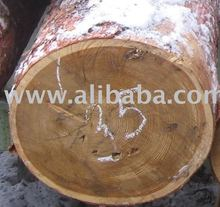 SIBERIAN LARCH LOGS/SAWNTIMBER