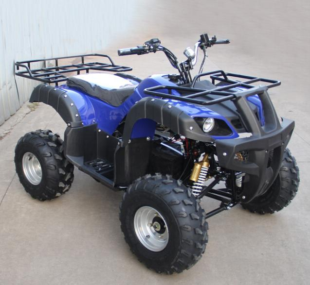 powerful brushless motor Adult Electric ATV