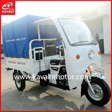 Africa Popular Cargo Passenger Double Usage Electric Adult Tricycle / Adult Pedal Trike