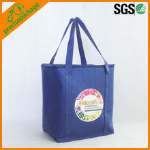 hot selling pizza cooler bag