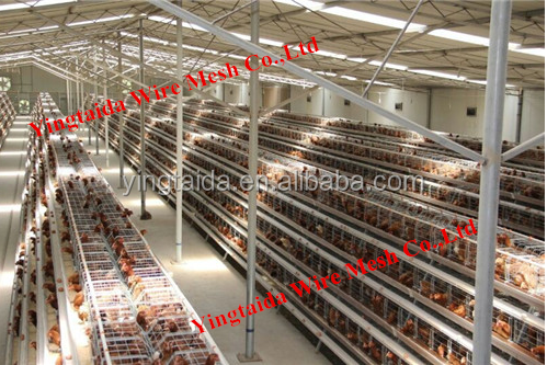 pvc coated or galvanized cage for breeding <strong>rabbits</strong> (ISO9001 factory)