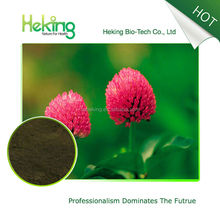 Hot sale natural red clover extract 2.5% isoflavone, red clover extract 2.5% isoflavone powder
