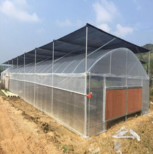 China Plastic Film Tunnel Greenhouse for Agriculture