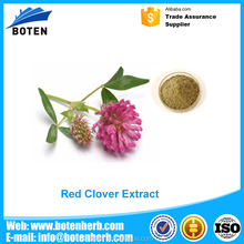New product 2016 natural red clover extract with low price