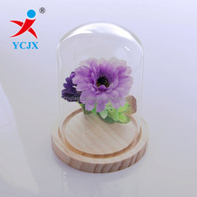 BEST GIFT DECORATIVE CLEAR HAND GLASS DOME WITH WOOD BASE
