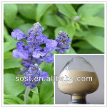 manufacture supply bulk chia seed extract