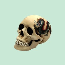 New Fresh Designed Skull Shaped Money Box for Bills