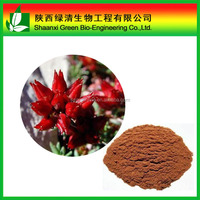 Rhodiola Rosea Extract 3% Salidroside Powder