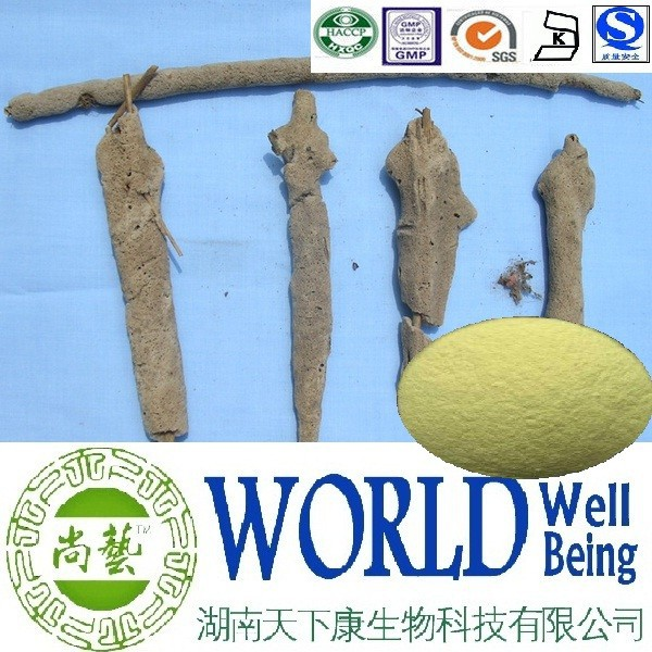Hot sales Spongilla extract/Needle sponge 98%/Freckle Removal Factory supply