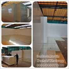 Commercial Insulation Storage Cold Room by Modular PU Panels with cam lock system