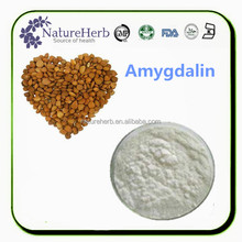 Bitter Apricot Seed Extract,Almond Extract,Amygdalin Vitamine B17