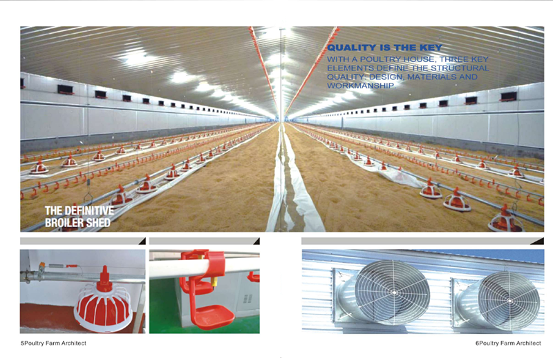 leading modern prefab low cost poultry farming house with equipment in China