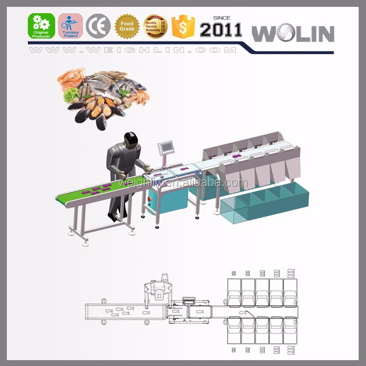 New 2017 Welin auto dynamic weight grading sorting classifying piece weight choosing selection online for fresh frozen seafood