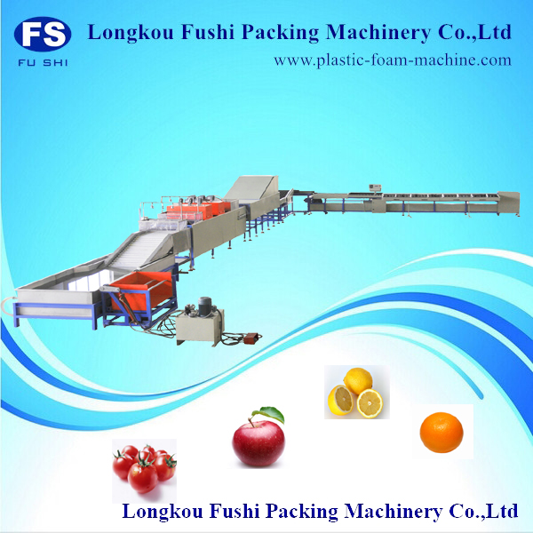 electronic vegetable grading machine