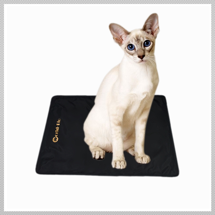 Exclusive individual Trending products dog mat