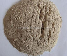 High Quality Feed Additive 99% Acid Protease