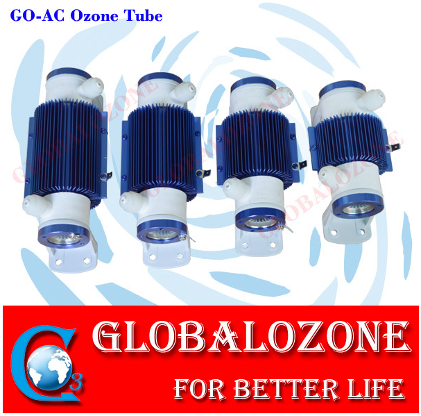 Portable ozone generator disinfection device for washing vegetables