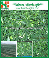 Hot Selling Frozen Chinese Green Onions Cut