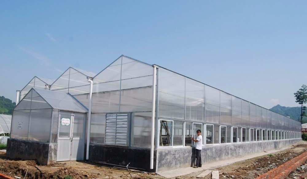 2015new Professional product transparency agriculture material Farm green house