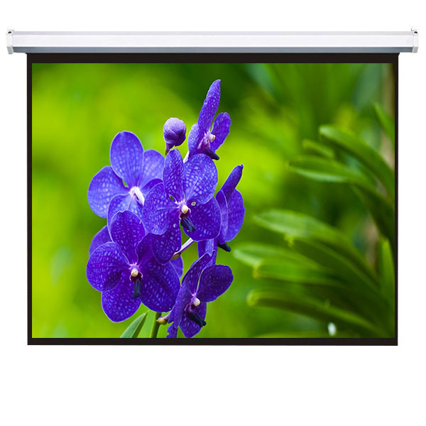 250 inch giant electric projection screen