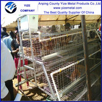 alibaba china market 3 tiers battery layer chicken cage /egg laying chicken poultry farm /poultry cage