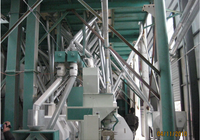 Low Price 80t Whole Set wheat/corn flour Mill