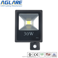 CE SAA ROHS approval COB pir motion sensor led flood light 30w pir flood light