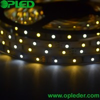 warm white and white double color 3528 led strip for decoration