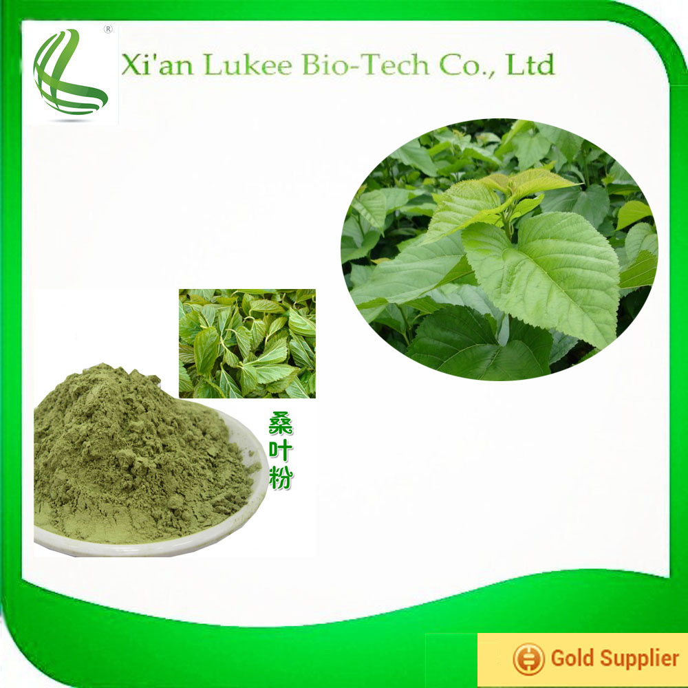 Top quality Mulberry extract/Mulberry leaf extract/ 1-Deoxynojirimycin (1-DNJ)