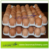 Leon wholesale plastic egg tray /egg carton/egg tray carton