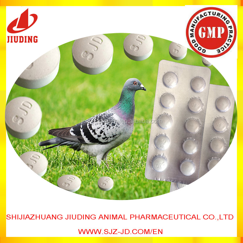 Oxytetracycline for racing pigeon medicine