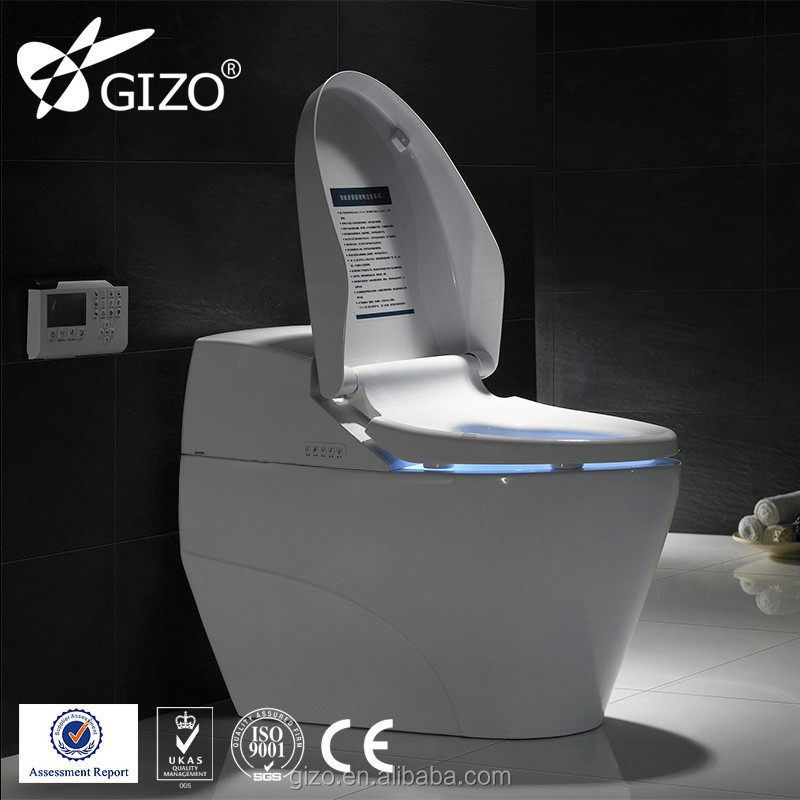 all in one toilet seat. All In One Automatic  Wholesale water toilet seat bidet Online Buy Best