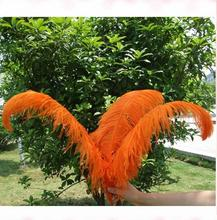 China Wholesale Party festival ostrich feathers for wedding decorremote control led flashing wristband ostrich Feathers