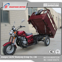 Flexiable three wheel cargo trike/scooter