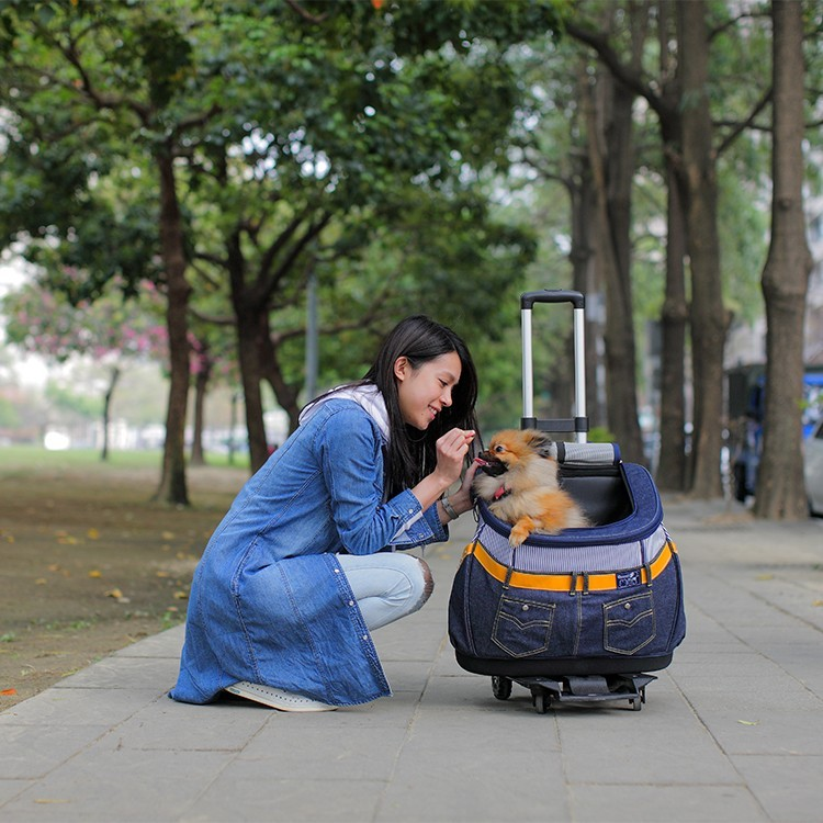 pet carrier bag dog backpack