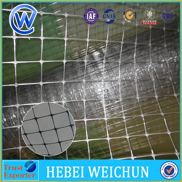 Plastic stretch wire netting for chicken goose duck/alibaba hot sale