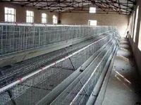 Poultry cage Poultry battery cage for nigerian farm layer chicken cage for sale