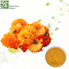 /product-detail/plant-extract-gmp-aztec-marigold-extract-60693868165.html