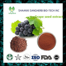 Factory Directly grape seed softgel/Proantocyanidins Polyphenols powder With Promotional Price